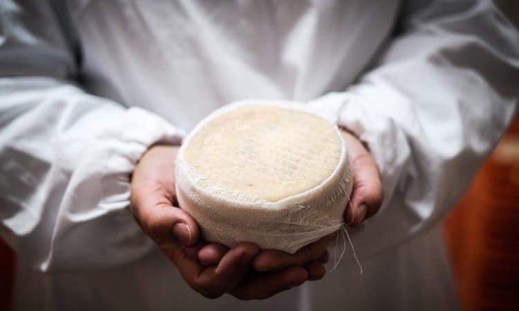 imagem de um queijo das marinhas