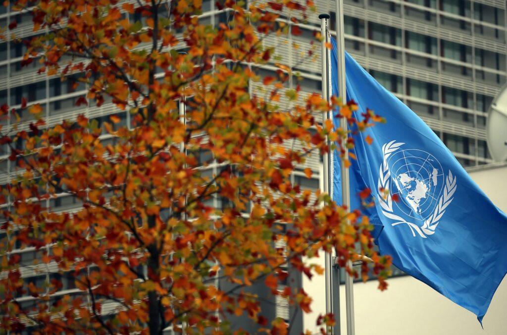 ONU dá Esposende como exemplo em políticas inovadoras no âmbito do COVID-19 1